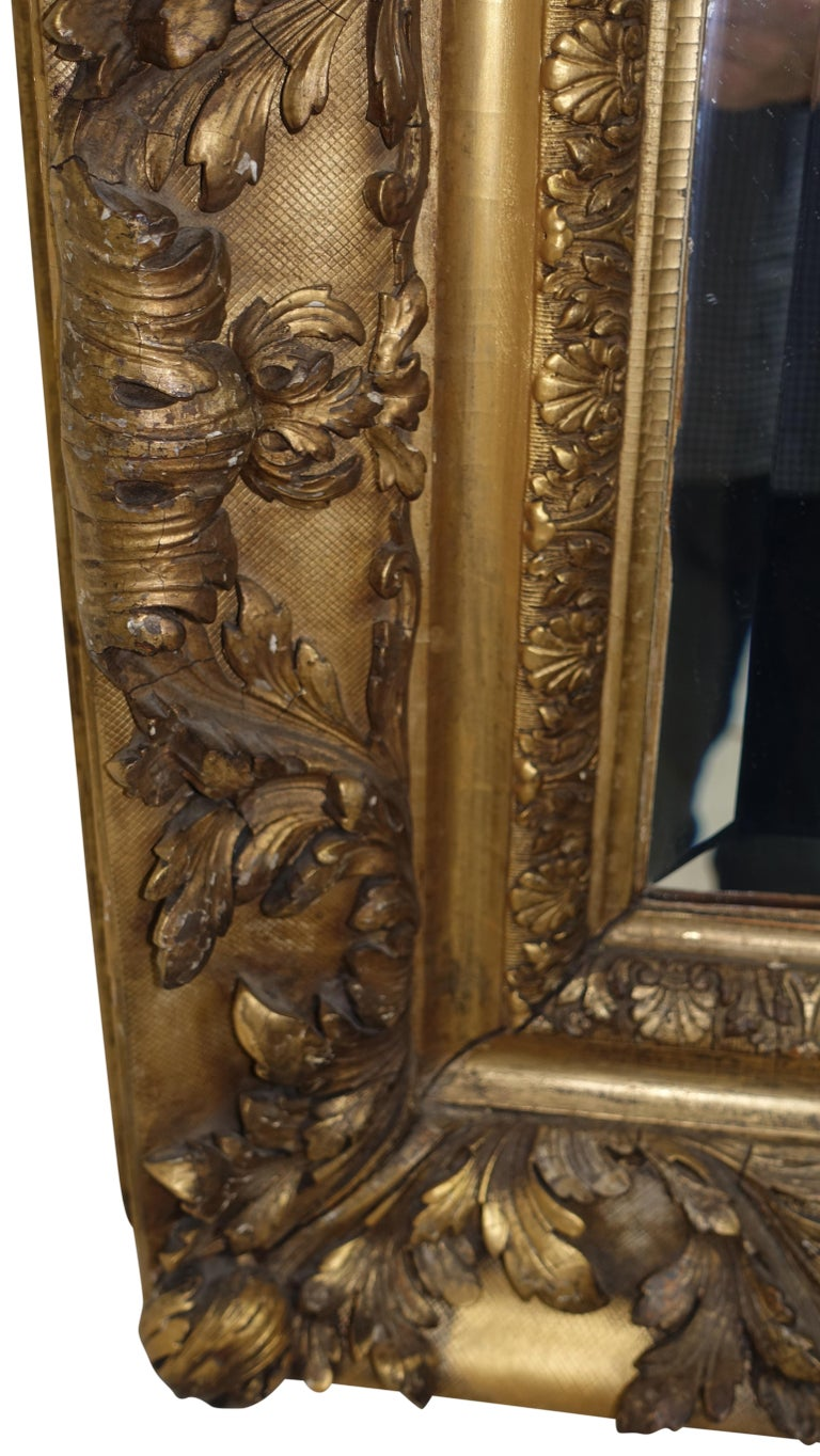 Gesso and Carved Gilt Framed Mirror, English, 19th Century In Good Condition For Sale In San Francisco, CA