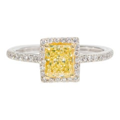 GIA Certified 1.05 Carat Ninacci Couture Diamond Engagement Ring
