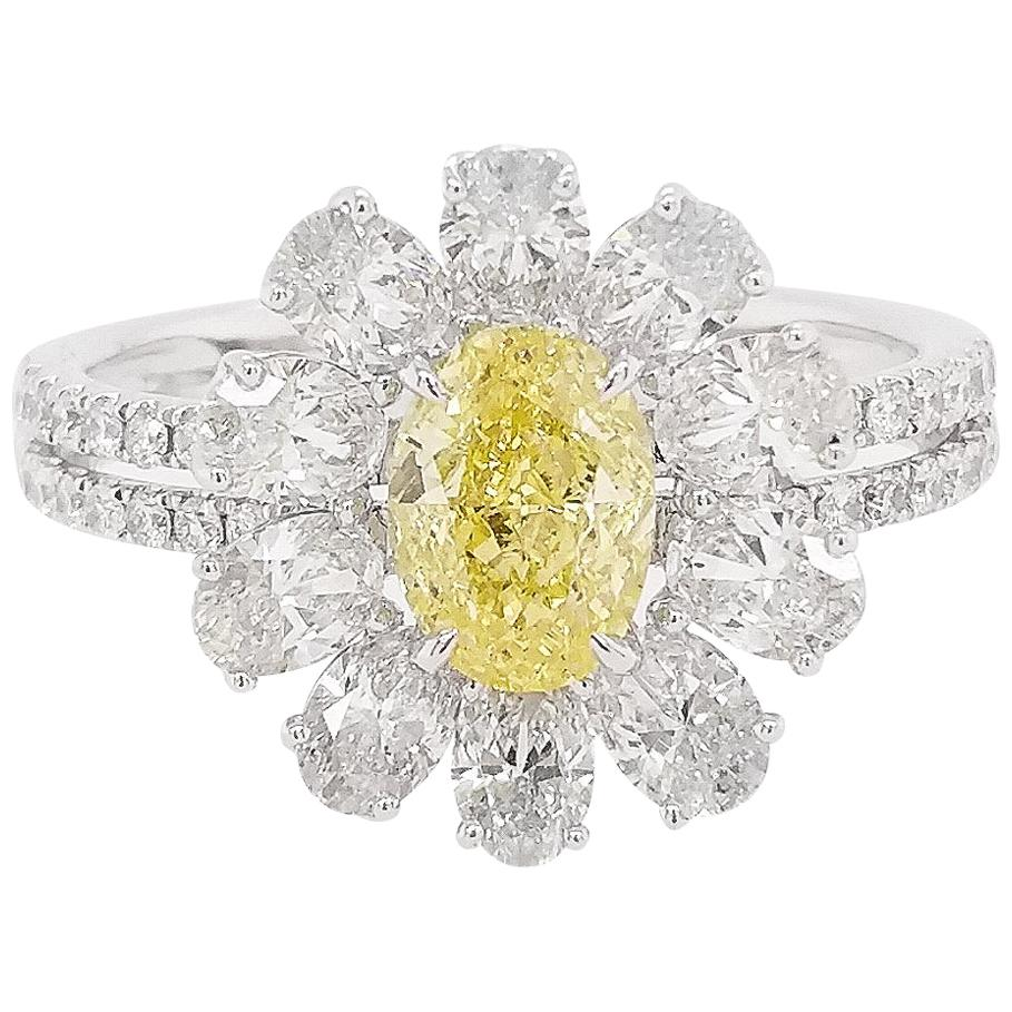 GIA Certified Fancy Intense Yellow Diamond White Diamond Platinum Cocktail Ring