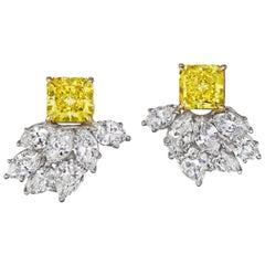 Gold Lever-Back Earrings