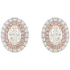 GIA certified White Diamond Natural Argyle Pink Diamond in Platinum Stud Earring