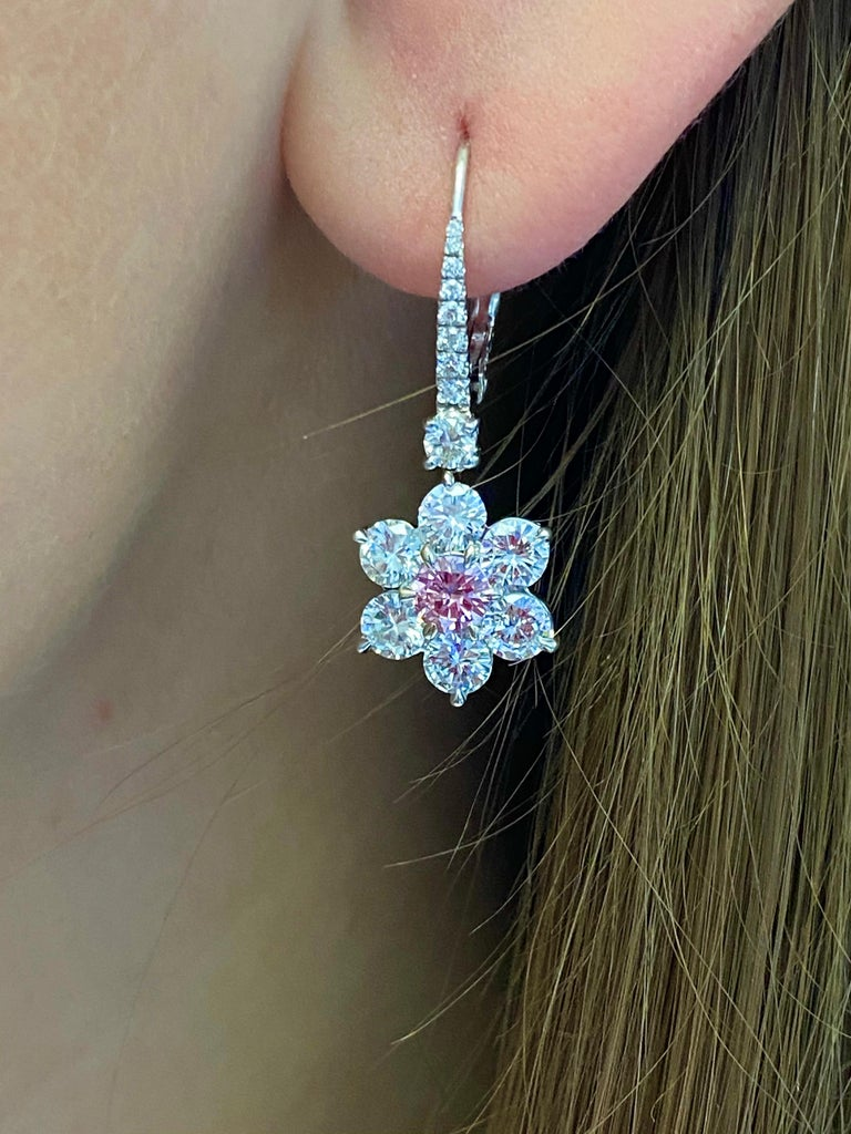 Intense Purplish Pink and White Diamond Earrings. This pair of earrings has 2center round brilliant diamonds weighing 0.56 carats  Fancy Intense Purplish Pink color &  GIA certified surrounded with 3.66ct of round brilliant diamonds set in platinum