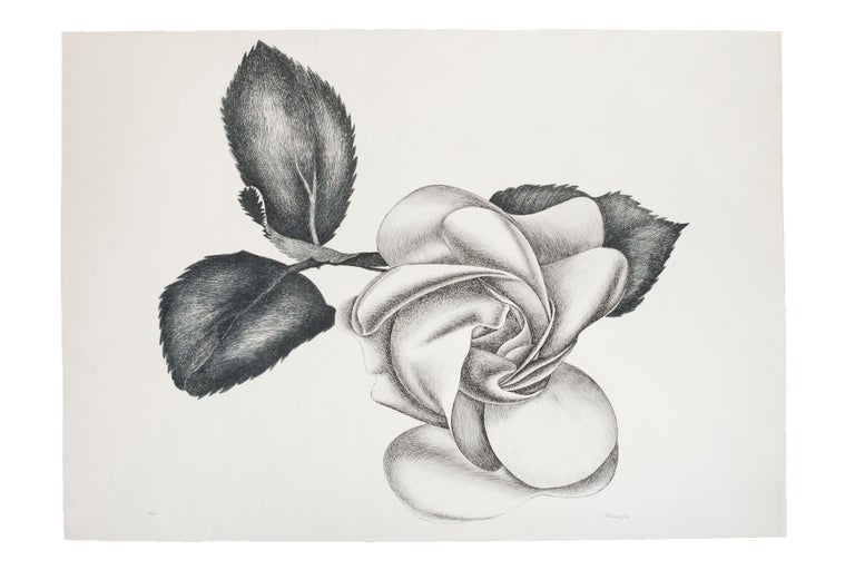 Black Rose is a beautiful original black and white etching on paper, realized by the Italian artist Giacomo Porzano (1925-2006).  Hand-signed, dated and numbered in Arabic numerals by the artist in pencil on lower margin.  Edition of 50 prints