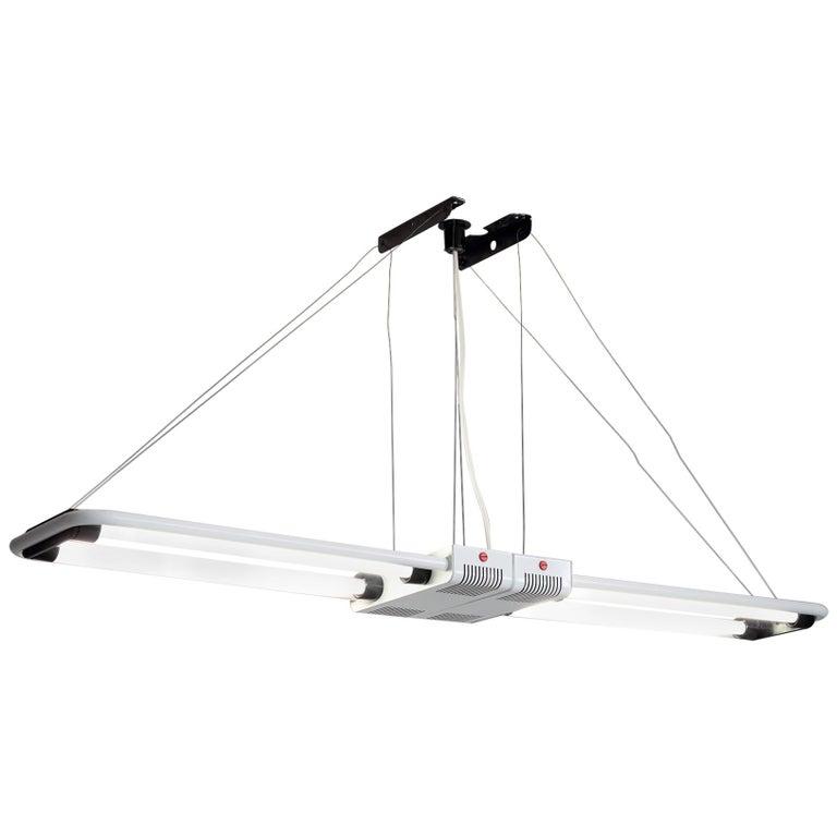Gian Nicola Gigante Fluorescent 'Chandelier' For Sale