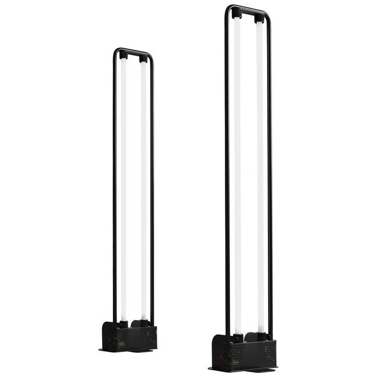 Gian Nicola Gigante Fluorescent Floor Lamp for Zerbetto ...
