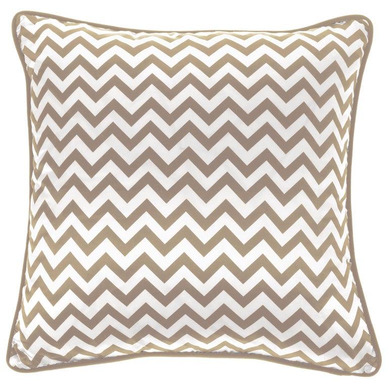 Gianfranco Ferré Chevron Medium Beige Cushion in Silk and Velvet For Sale