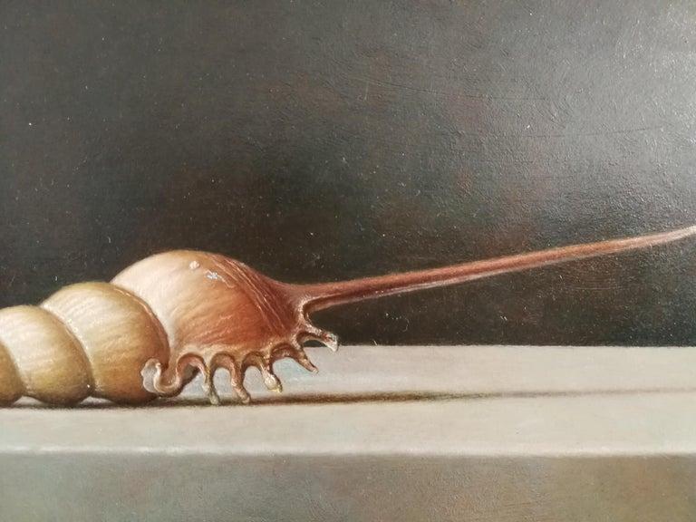 Tibia fusus - Realist Painting by Gianluca Corona