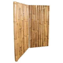 Giant Bamboo Panel / Screen / Fence, 20th Century