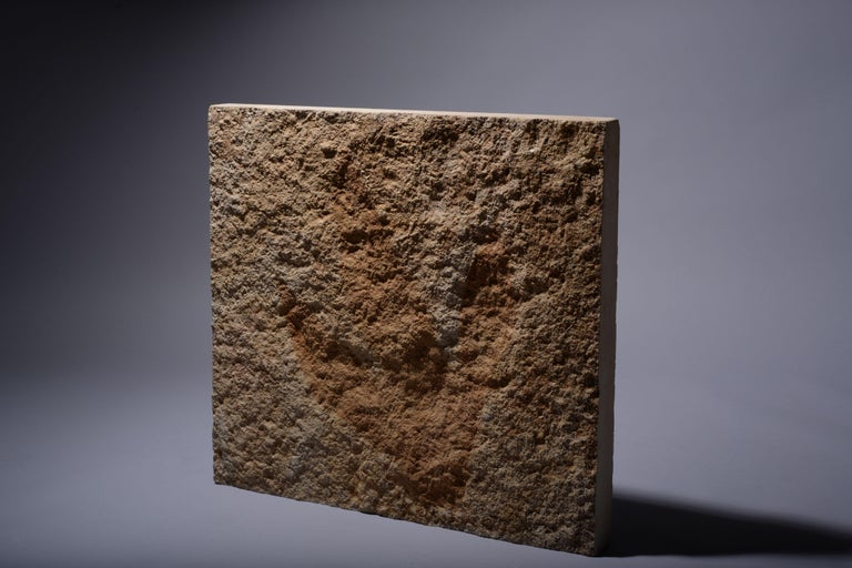Giant Jurassic Dinosaur Theropod Footprint Fossil, 150 Million Years Old In Excellent Condition For Sale In London, GB