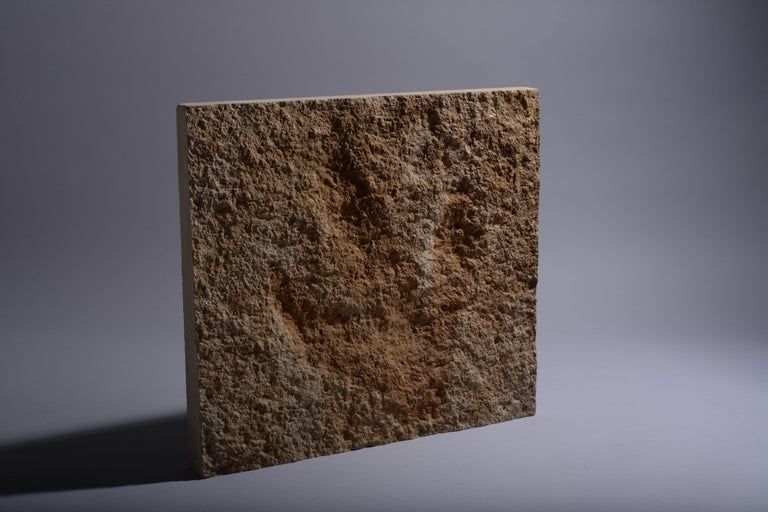18th Century and Earlier Giant Jurassic Dinosaur Theropod Footprint Fossil, 150 Million Years Old For Sale