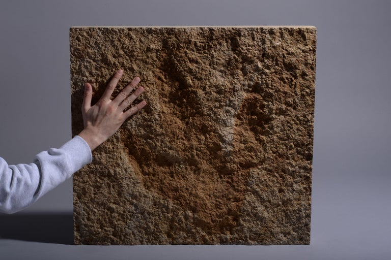 Other Giant Jurassic Dinosaur Theropod Footprint Fossil, 150 Million Years Old For Sale
