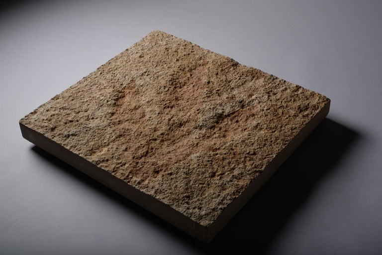 Giant Jurassic Dinosaur Theropod Footprint Fossil, 150 Million Years Old For Sale 1