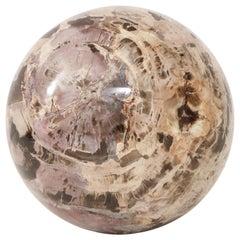 Giant Polished Petrified Wood Sphere