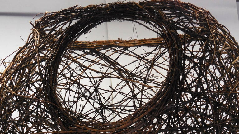 Gigantic Grapevine Bird's Nest Sculpture For Sale 7