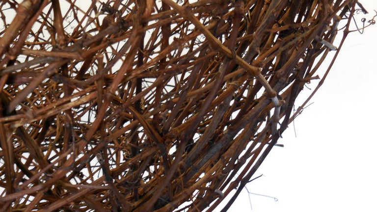 Gigantic Grapevine Bird's Nest Sculpture For Sale 8
