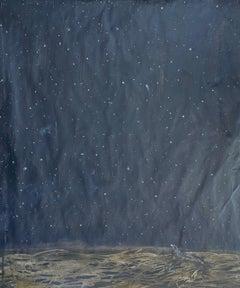 Night Sky/ Argos and Sea Kelp