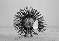 """les precautions elementaires (Elementary precautions)"" man inside urchin photo"