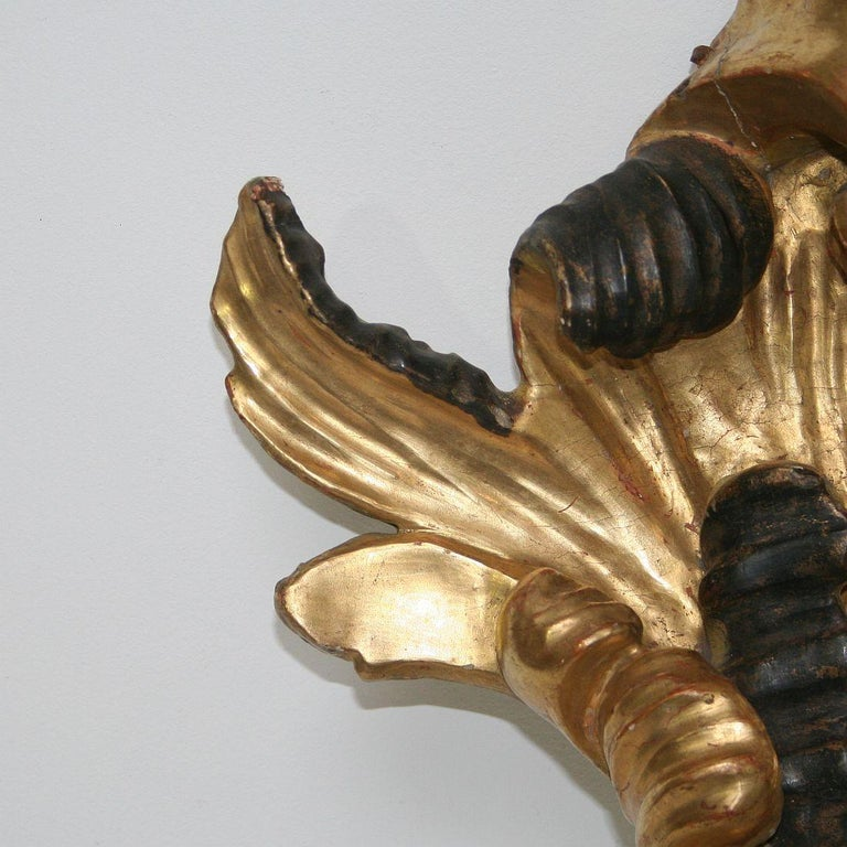 Gilded 18th Century Italian Baroque Carved Wooden Curl For Sale 7