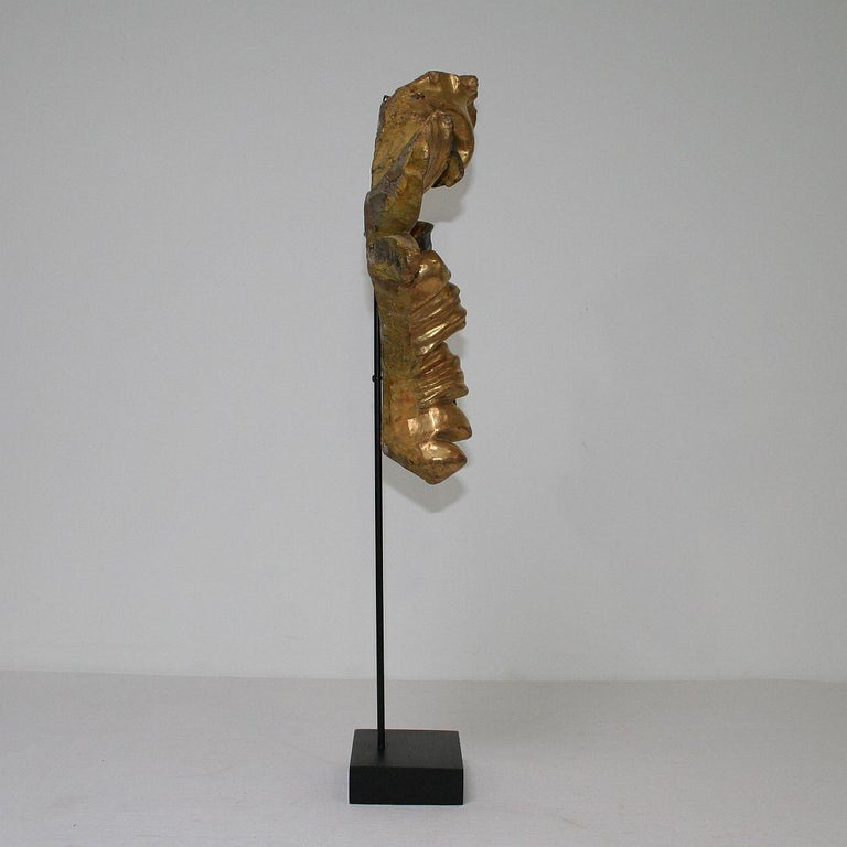 Gilded 18th Century Italian Baroque Carved Wooden Curl In Good Condition For Sale In Amsterdam, NL