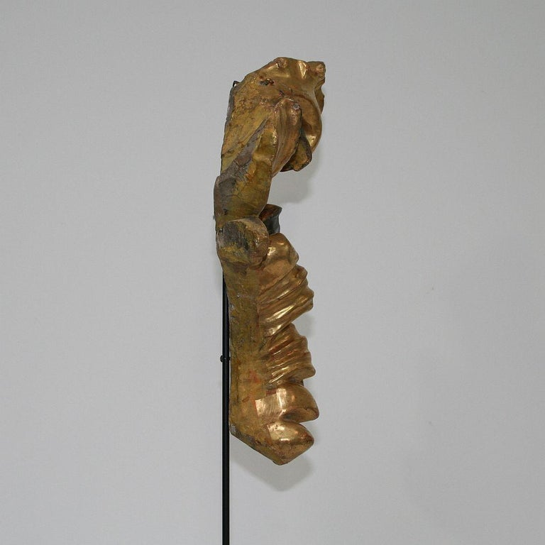 Gilded 18th Century Italian Baroque Carved Wooden Curl For Sale 4