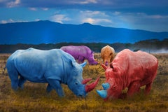 Photography Print - Animal Art - Gillie and Marc - Colourful Rhinos in field