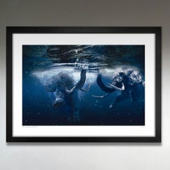 Print - Limited Edition - Animal Art - Gillie and Marc - Elephants - New
