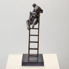 Bronze Sculpture - Art - Limited Edition - Endangered Animal - Koala - Ladder
