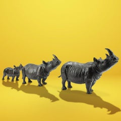 Bronze Sculpture - Gillie and Marc - Limited Edition - Animal - Wildlife - Rhino