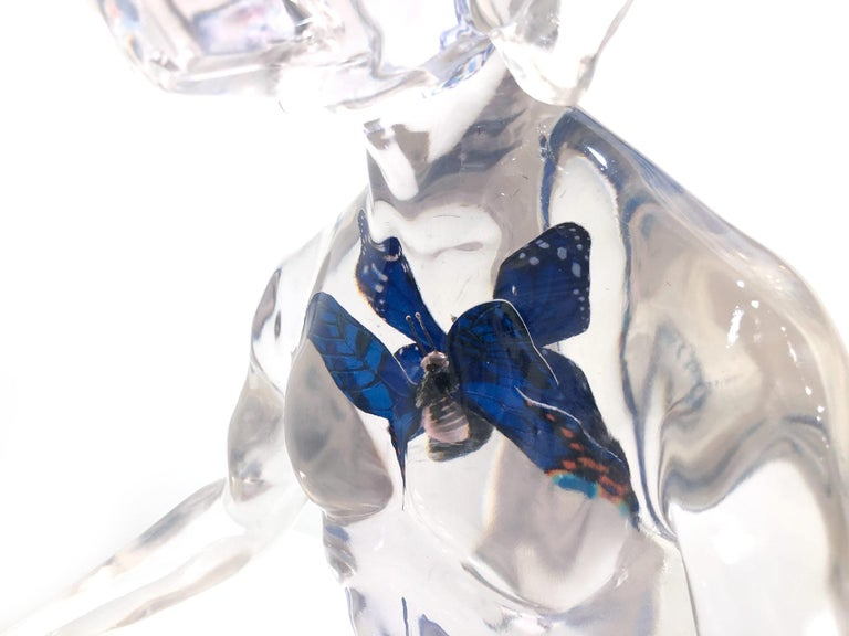 Butterfly Blue Dogman For Sale 13