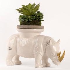Ceramic Sculpture - Gillie and Marc - Rhino - Wildlife - Animals - White w Gold
