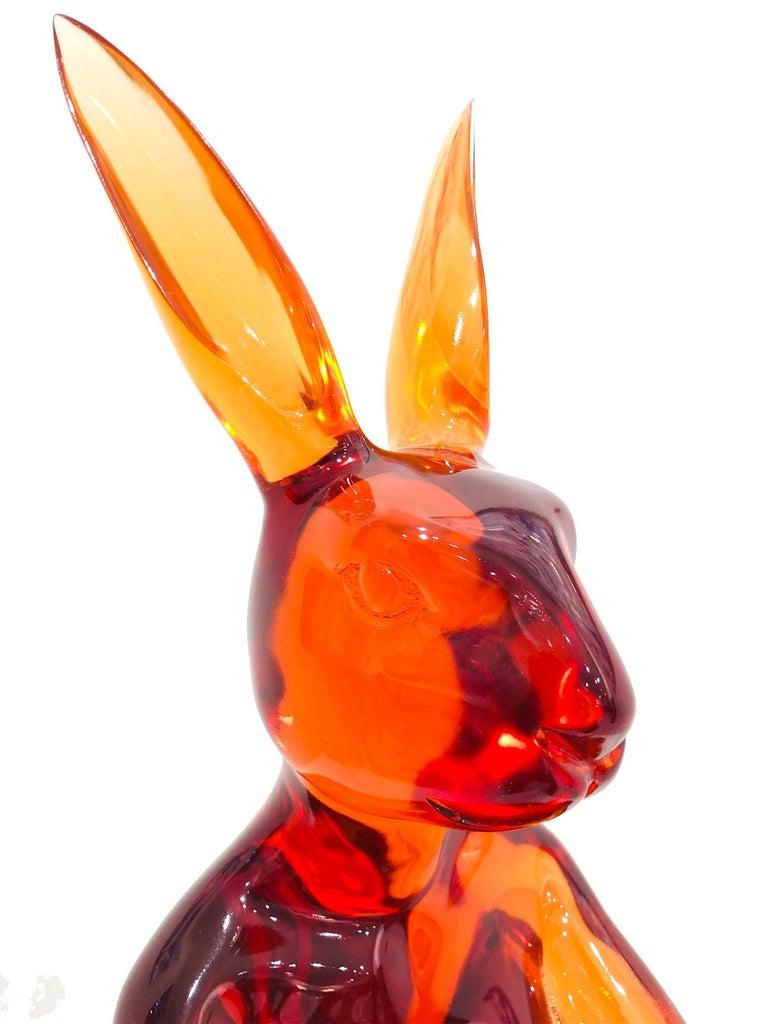 Lolly Rabbitgirl (Orange) For Sale 12
