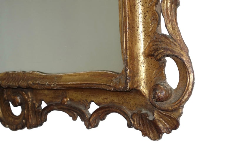 19th Century Gilt and Carved Wood Framed Mirror, Italian circa 1800 For Sale