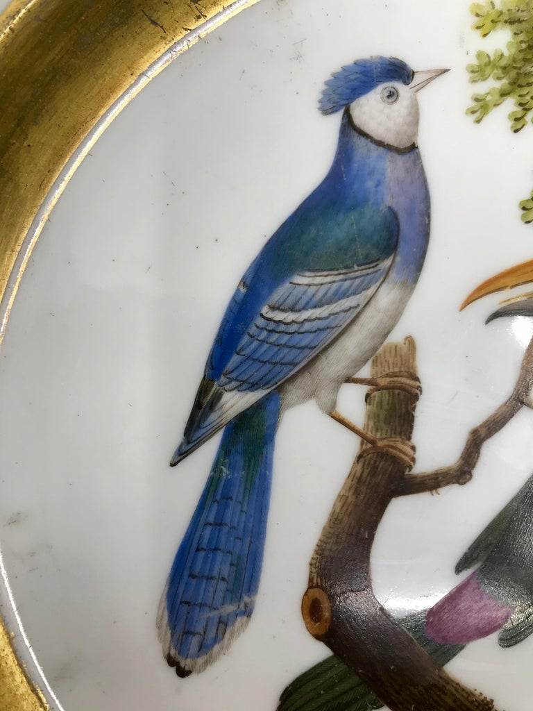 Porcelain Gilt and Painted Neoclassical French Empire Bird Plate For Sale