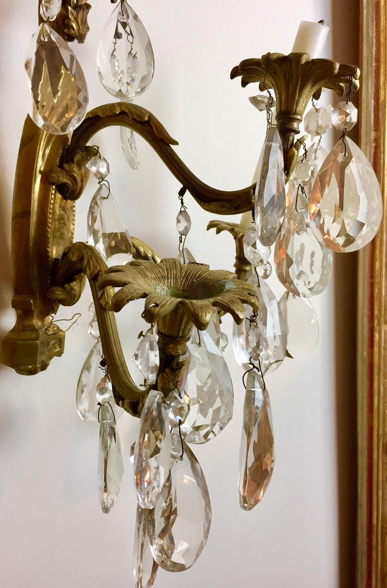 Gilt Bronze and Crystal Sconces, Pair For Sale 11
