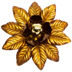 Gilt Iron Flower Burst Mount or Wall Light, 1960s