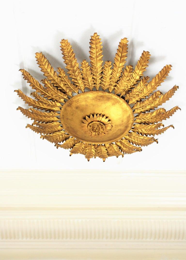 Spanish Gilt Iron Sunflower Sunburst Ceiling Light Fixture or Wall Sconce, Spain, 1950s For Sale