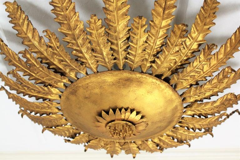 Gilt Iron Sunflower Sunburst Ceiling Light Fixture or Wall Sconce, Spain, 1950s For Sale 2