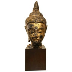 Gilt Lacquer Thai Head of Buddha