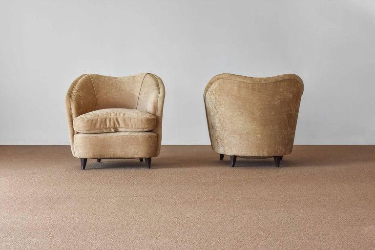 Italian Gio Ponti, Lounge / Armchairs, Beige Velvet, Dark Beech Legs, Italy, 1940s For Sale