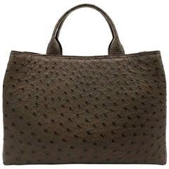Giòsa Milano Dark Brown Ostrich Bag