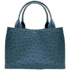 Giòsa Milano Jeans Ostrich Bag