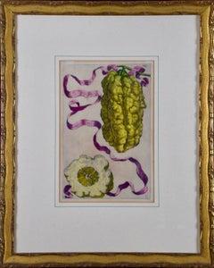 """Limon Straitus Amalphitanus"" Ferrari 17th C. Hand Colored Engraving of Lemons"