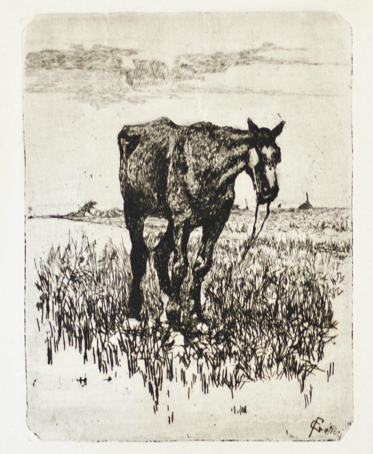 The Old Horse - Original Etching by Giovanni Fattori - 1900-1908 ca. For Sale 2