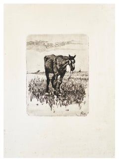 The Old Horse - Original Etching by Giovanni Fattori - 1900-1908 ca.