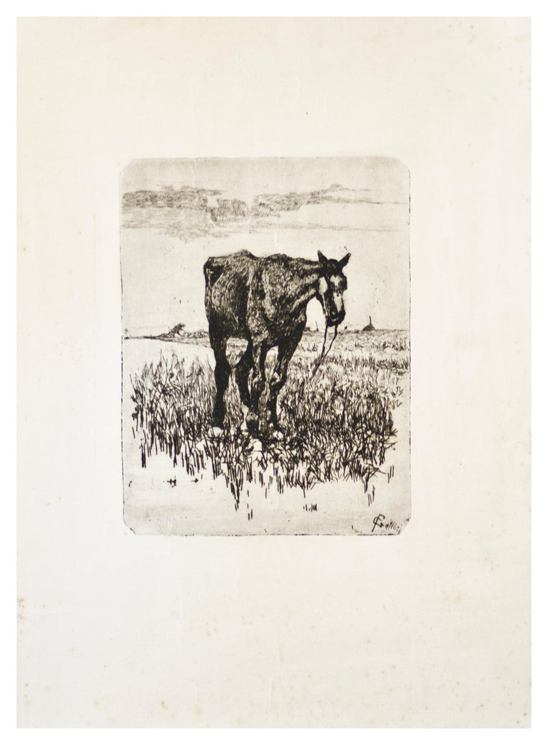 """Image dimensions: 20.2 x 15.3 cm.  The Old Horse is a superb original etching (on copper matrix) on paper, signed on plate by the Italian Macchiaioli master Giovanni Fattori (Livorno, 1825 - Florence, 1908).  Signed on the lower right margin """"G."""