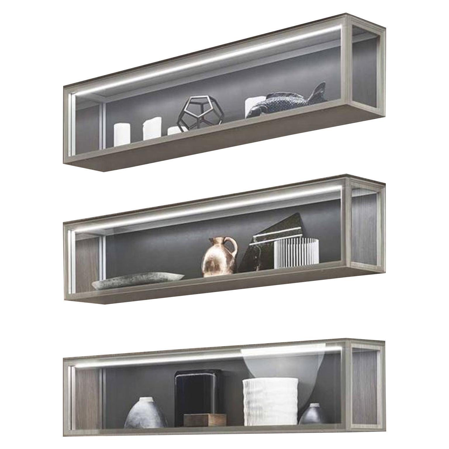 Glass and Walnut Wood Horizontal Wall Cabinet
