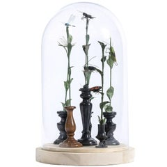 Glass Bell Jar