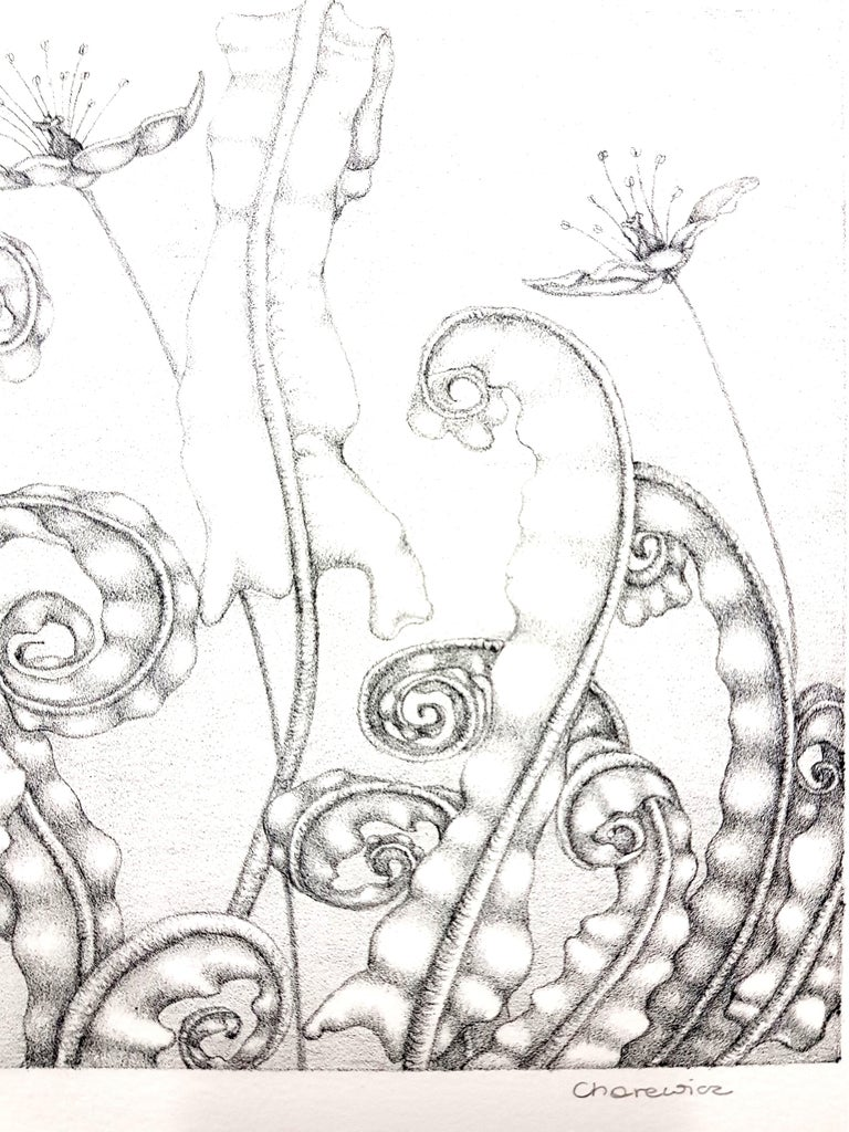 Gochka Charewicz - Herbarium - Original Signed Lithograph - Gray Landscape Print by Gochka Charewicz