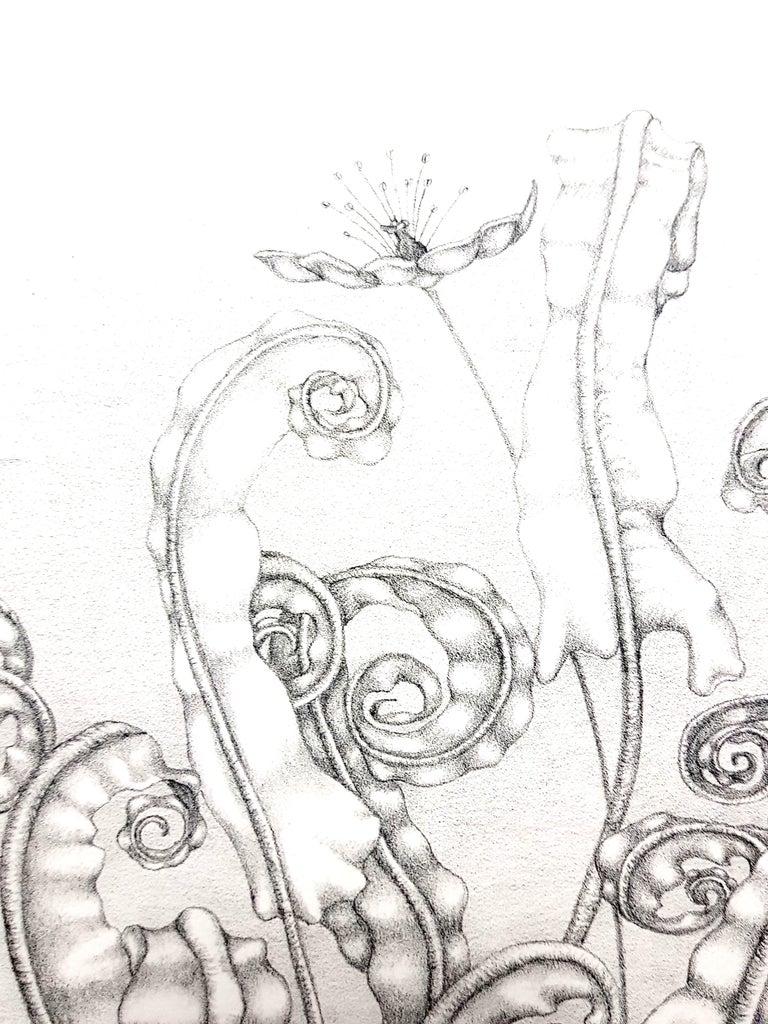 Gochka Charewicz - Herbarium - Original Signed Lithograph For Sale 1