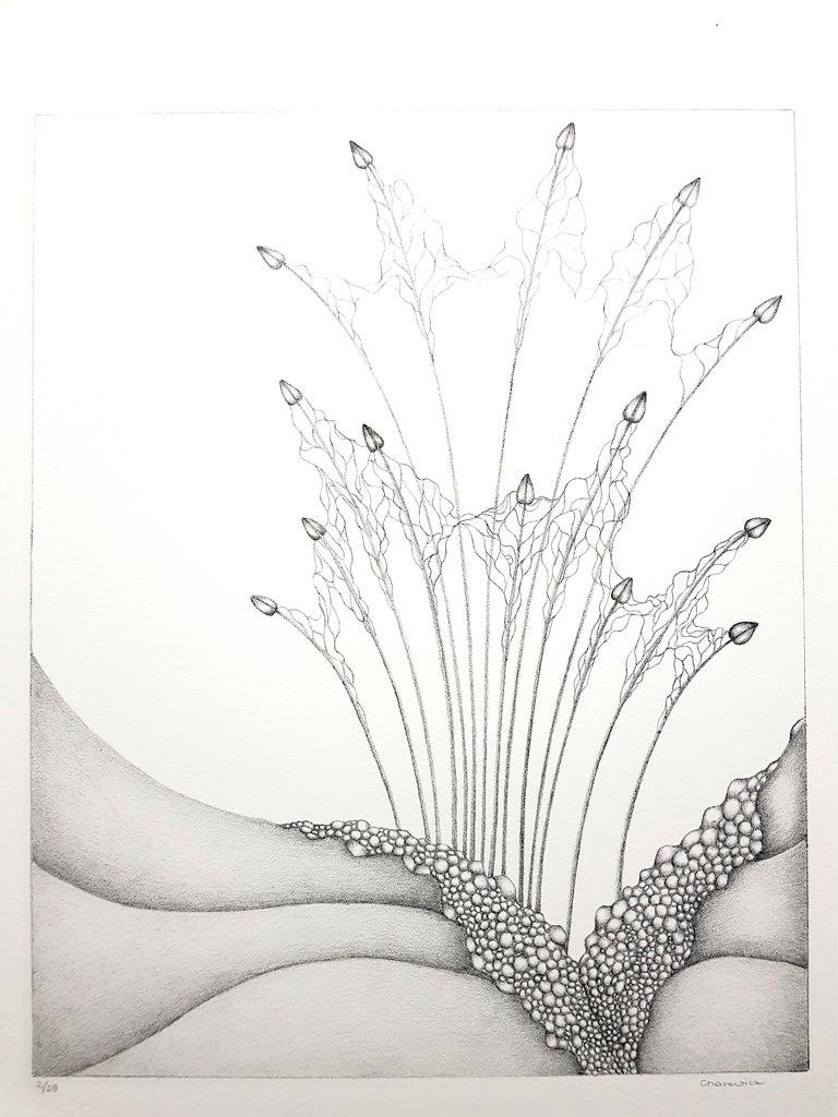 Gochka Charewicz - Herbarium - Original Signed Lithograph - Print by Gochka Charewicz